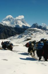 Routes to everest base camp | Everest package| gokyo cho la pass